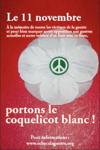 coquelicot 3